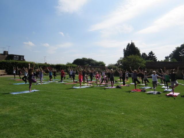 Yoga in the rose garden